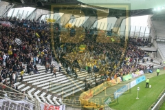 FCN-Arles3