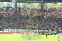 FCN-Auxerre21