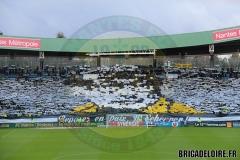 FCN-Saint-Etienne3c