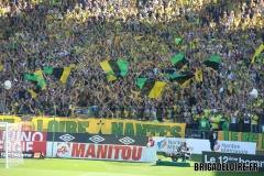 FCN-Monaco11c