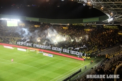 FCN-Angers-10