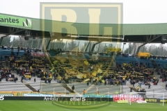 FCN-Arles1