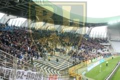 FCN-Arles4