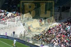 FCN-GFC Ajaccio6