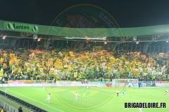 FCN-Toulouse01c