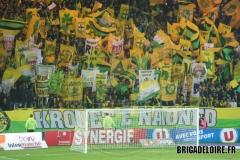FCN-Toulouse06c