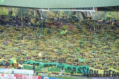 FCN-Saint-Etienne02c