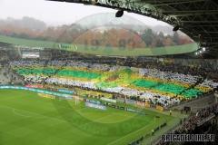 FCN-Saint-Etienne05c
