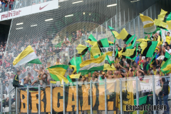 Metz-FCN3c