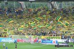 FCN-Montpellier02c