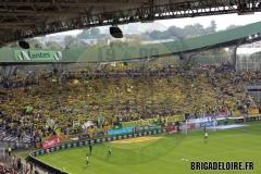 FCN-Lyon01c