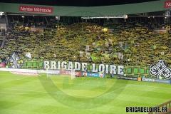 FCN-Lyon2c