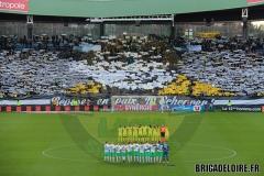 FCN-Saint-Etienne4c
