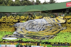 FCN-Rennes5c