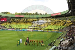 FCN-Rennes6c