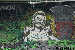 FCN-Rennes11c