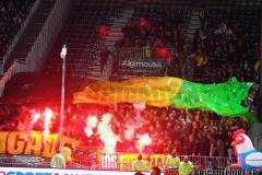 Angers-FCN14.jpg