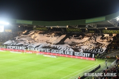 FCN-Angers-08